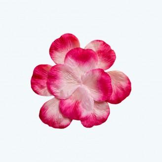 Rose Petal Fuchsia-pack of 400